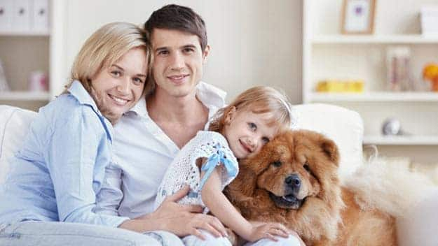 Wills & Trusts dog-young-family Direct Wills Gainsborough